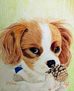 Puppy Drawings - Playful Ginger by Zelma Hensel
