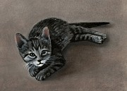 Stripes Pastels Metal Prints - Playful Kitten Metal Print by Anastasiya Malakhova
