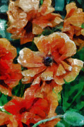 Loose Mixed Media - Playful Poppies 7 by Angelina Vick