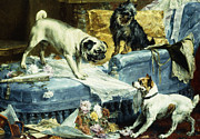 Bulldog Paintings - Playing Havoc by Charles van den Evcken