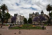 John Daly - Plaza de Mayo