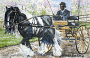 Horse And Cart Posters - Pleasure Driving Poster by Denise Horne-Kaplan
