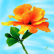 Flowers Of Paradise - Pleasure - Yellow Double Hibiscus by Ben and Raisa Gertsberg