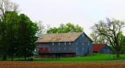 Countrylife Prints - Plenty Of Barn Windows Print by Tina M Wenger