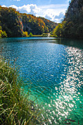 Plitvice Lakes National Park Posters - Plitvice Lake Poster by David Waldo