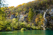 Plitvice Lakes National Park Posters - Plitvice Lake Shore Poster by David Waldo