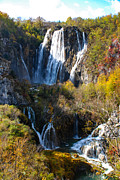 Plitvice Lakes National Park Posters - Plitvice Valley Poster by David Waldo