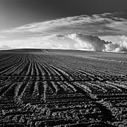 Spaces Prints - Plowed field in Limagne. Auvergne. France Print by Bernard Jaubert