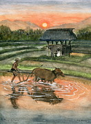 Melly Terpening Paintings - Plowing The Ricefield by Melly Terpening