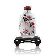 Glass Bottle Drawings - Plum blossom in Snuff Bottle-1 by Guohui Wang