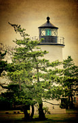 Plum Framed Prints - Plum Island Light Framed Print by Joan Carroll