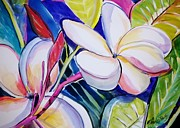 Therese Fowler-Bailey - Plumeria Burst