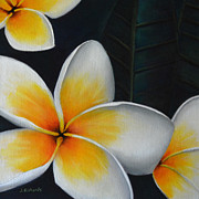 Jennifer Richards - Plumeria