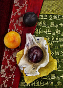 Harvest Art Posters - Plums Poster by Elena Nosyreva