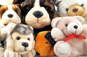 Toy Animals Prints - Plush dogs and teddies Print by Jose Elias - Sofia Pereira