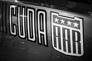 Cuda Prints - Plymouth Cuda AAR Decal Print by Paul Velgos