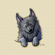 Featured Digital Art Originals - Pocket Schipperke by Kim Niles