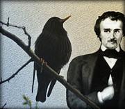 Poe Posters - Poe and the Raven Poster by Bill Cannon