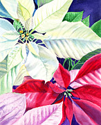Family Print Paintings - Poinsettia Christmas Collection by Irina Sztukowski
