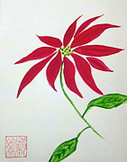 Margaret Welsh Willowsilk - Poinsettia