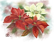 Judy Filarecki - Poinsettias for the...