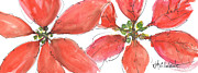 Christmas Flower Paintings - Poinsettias in the All Together by Kathleen McElwaine