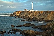 Point Arena Prints - Point Arena Lighthouse Print by Adam Jewell