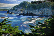 Point Park Posters - Point Lobos Poster by Ron White
