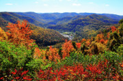 Color-point Framed Prints - Point Mountain Overlook in Autumn Framed Print by Thomas R Fletcher