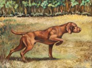 Vizsla Art - Point of Interest by Eve  Wheeler