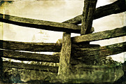 Split Rail Fence Prints - Point of Resistance Print by Janelle Oliver