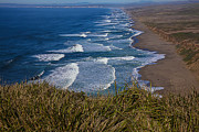 Marin Metal Prints - Point Reyes Beach Seashore Metal Print by Garry Gay