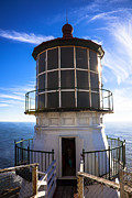 United States Lighthouses Posters - Point Reyes Lighthouse Station Poster by Garry Gay