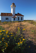 Brush Photos - Point Wilson Lighthouse by Mike  Dawson