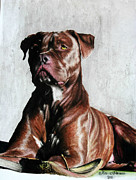 Brindle Painting Prints - Poise Print by Maci Fuhriman