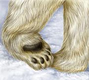 Laurie OKeefe - Polar Bear Paw