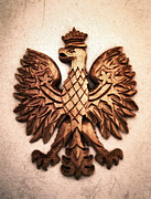 Wings Drawings - Polish Eagle by Patricia Januszkiewicz