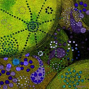 Microscopic Paintings - Pollen Universe by Barbara Moignard