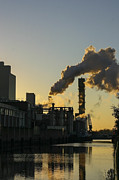 Patricia Hofmeester - pollution