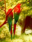 Polly Wants Two Crackers At New Orleans Louisiana Zoological Gardens  Print by Michael Hoard