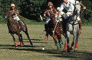 Harold E Mccray Posters - Polo Match -- Ball- I Poster by Harold E McCray
