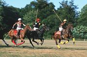 Harold E McCray - Polo Match I