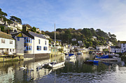 Swans Prints - Polperro Cornwall England Print by Colin and Linda McKie