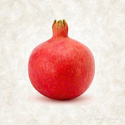 Red Prints - Pomegranate Print by Danny Smythe