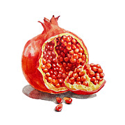 Juicy Painting Posters - Pomegranate  Poster by Irina Sztukowski