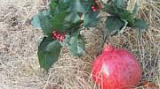 Pomegranate Love Forever Print by Feile Case