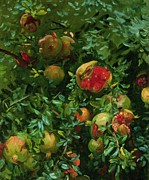 Singer  Paintings - Pomegranates    Majorca by John Singer Sargent