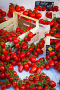 Ripe Photos - Pomodori Italiani by Inge Johnsson