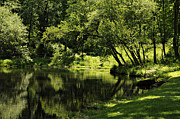 Addie Hocynec Art Photos - Pond at Glen Oaks Farm by Addie Hocynec