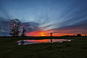 Time Stack Prints - Pond in the Pasture Print by Matt Molloy